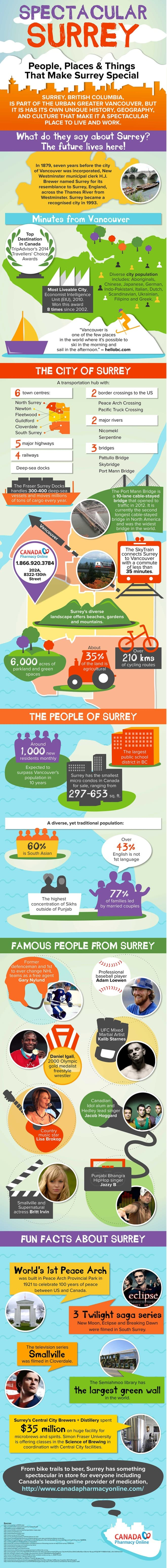 Spectacular Surrey infographic