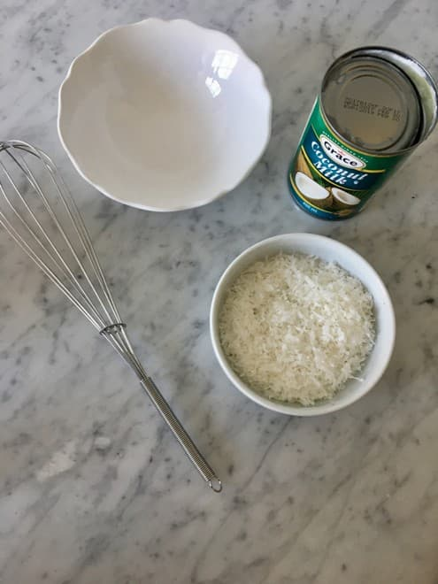 Mix together the coconut milk and shredded coconut until everything is blended together.