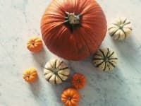Six Impressive Uses for Pumpkin – None of Which are for Dessert