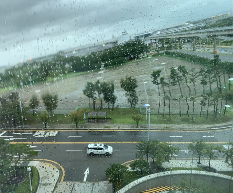 Photo Credit: Typhoon Bavi, @tiffany.ironfan's Instagram